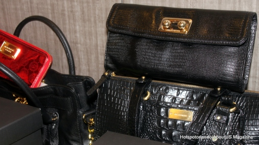 Fashionista1 (4)