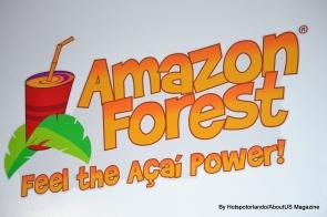 Amazon Forest 2 (11)