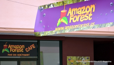 Amazon Forest 2 (14)