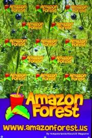 Amazon Forest1 (1)