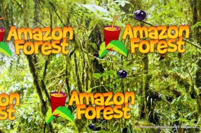 Amazon Forest1 (2)