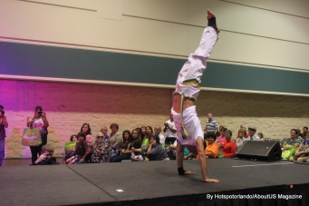 Hispanic Expo june (51)
