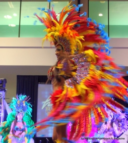 Hispanic Expo2012 (19)