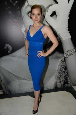 amy-adams-at-the-weinstein-company-entertainment-and-pathc3a9-post-bafta-party-hosted-by-grey-goose-at-rosewood-london