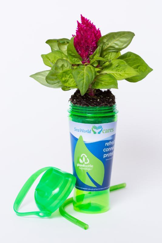 SeaWorld PlantBottle Cup