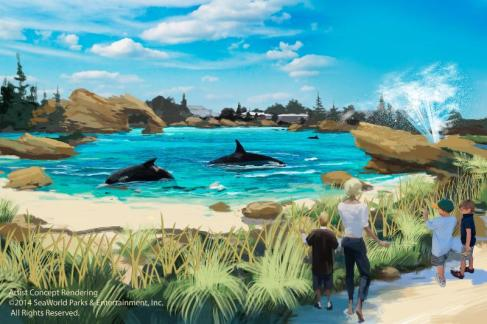 SeaWorld Entertainment Beach View