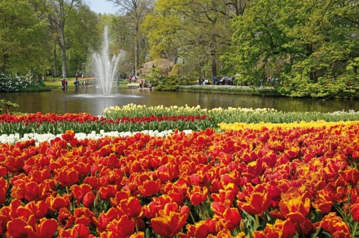 Keukenhof 2015 Season Opened by Willem van Gogh